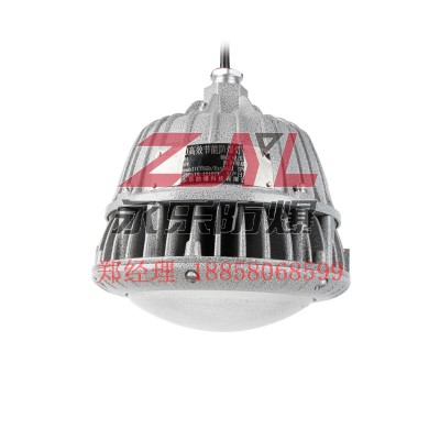 源头厂家现货供应LED防爆灯耐冲击足功率
