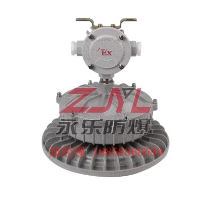 250W现货供应耐冲击防腐防尘厂家直销