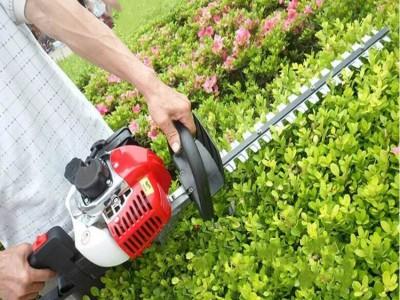单刃采茶用绿篱机 手持式电动绿篱机