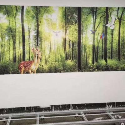 喷绘机墙壁大型小型户外印花机