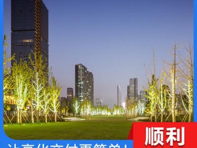 楼体亮化工程 郑州亮化工程 专注道路亮化工程 道路亮化工程正