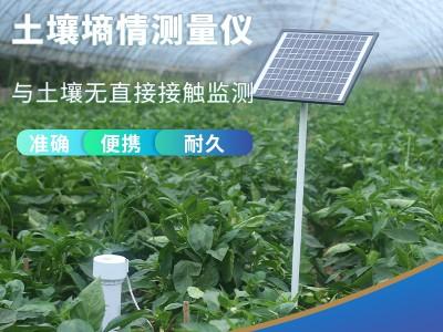 QY-800S管式墒情仪土壤水分测量仪土壤水分监测站
