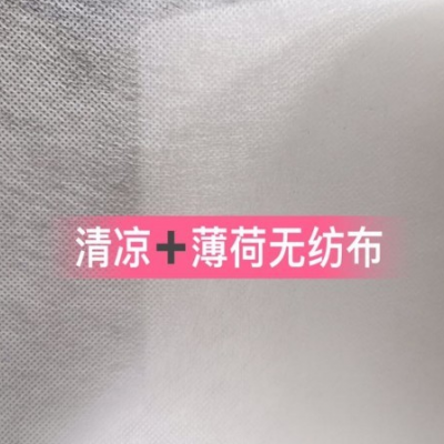 福建清凉薄荷无纺布厂家  清新薄荷味可供日本单子