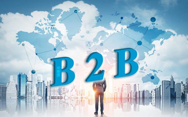 加拿大B2B网站国内赚钱时机